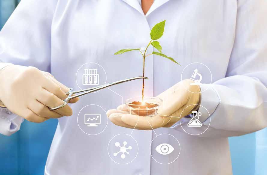 Page 26 of Científicos desarrollaron dispositivo para'comunicarse' con las plantas