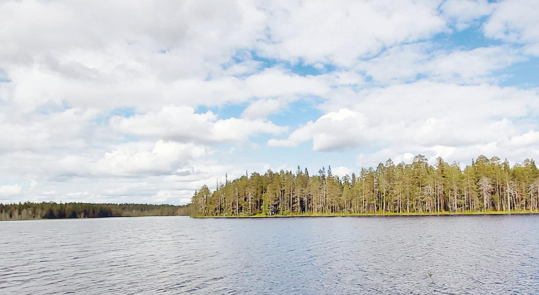 Page 24 of Jääkärien jalanjäljillä Kainuun selkosilla