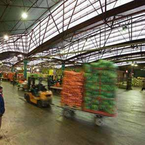 Page 8 of RSA Group Secures 100% Food Safety Accreditation at Tshwane Market