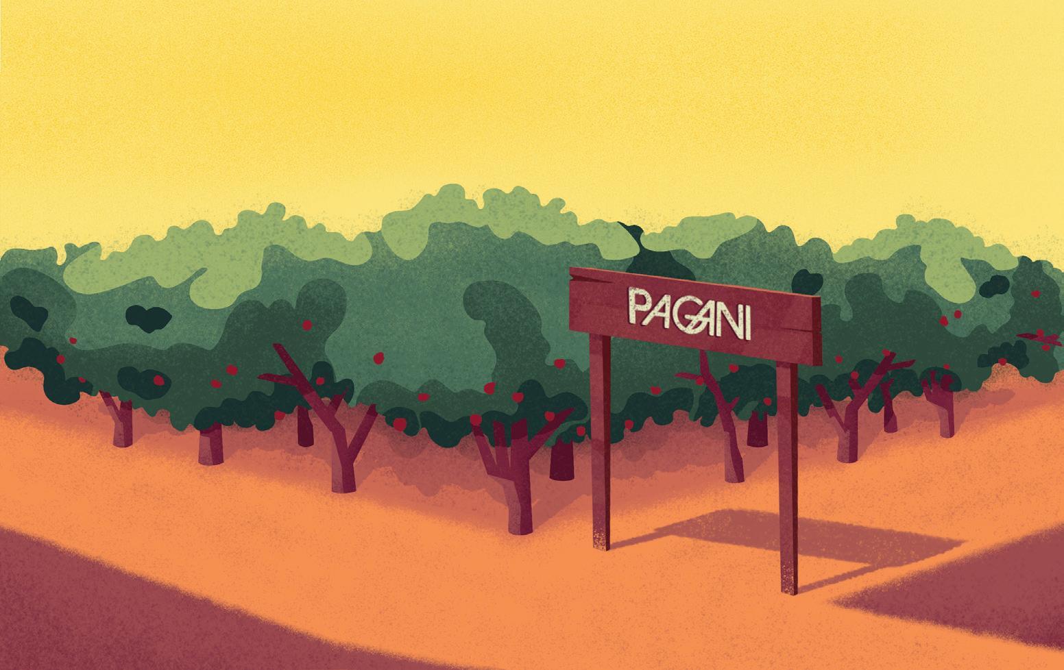 Page 34 of PAGANI