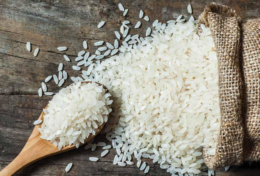 Page 22 of What to Know About Your Rice