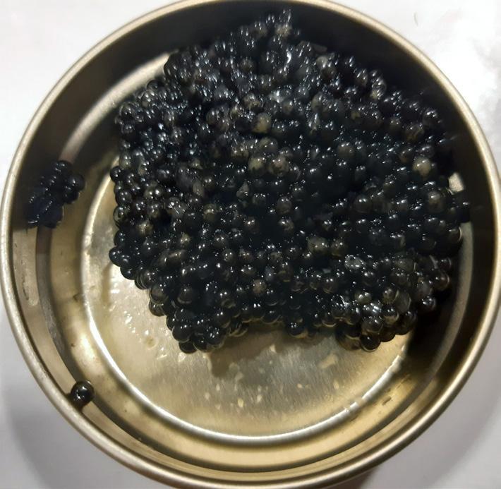 """Page 16 of Rysk kaviar"""" från Småland"""