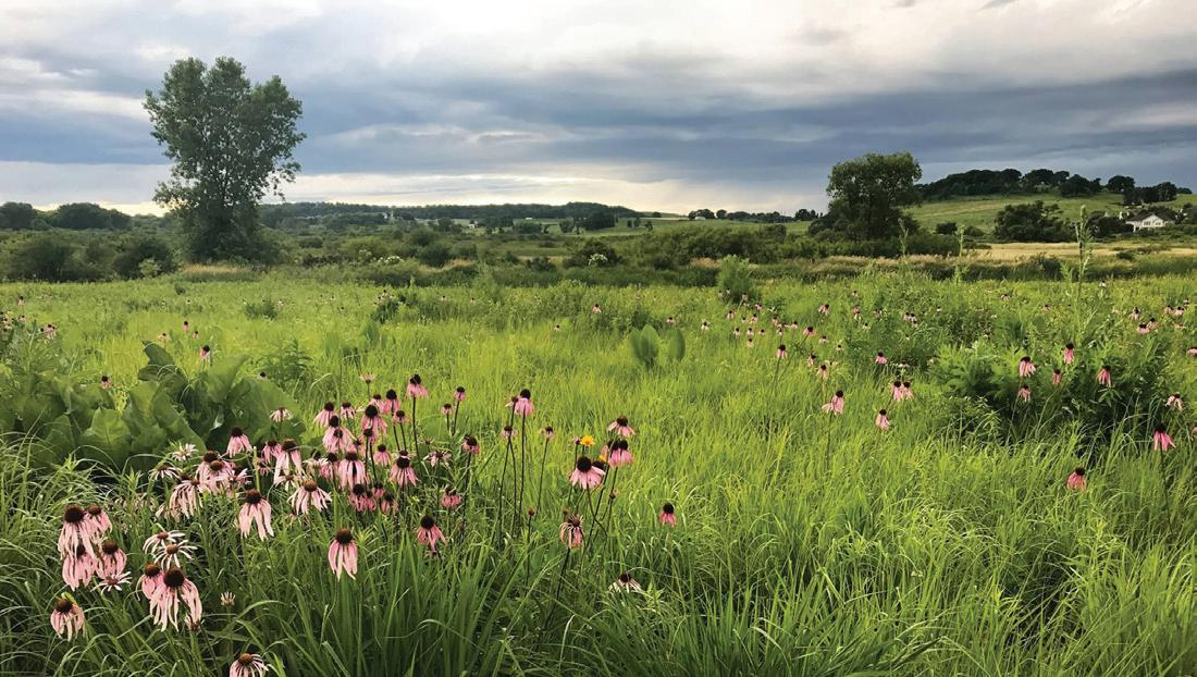 Page 6 of Five Things: Scenic trails around Dane County