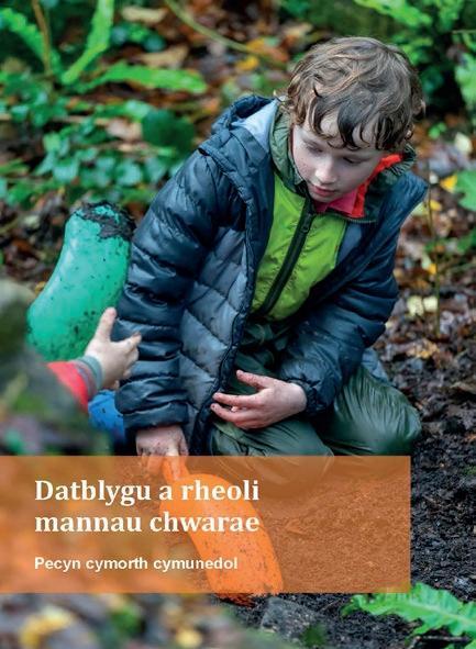 Page 16 of Datblygu a rheoli mannau chwarae