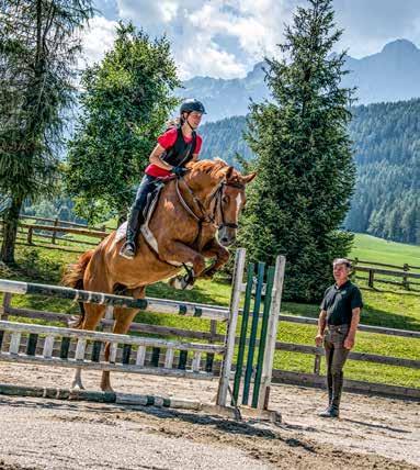 Pferdesingles aufgepasst: Reiter sucht Reiterin