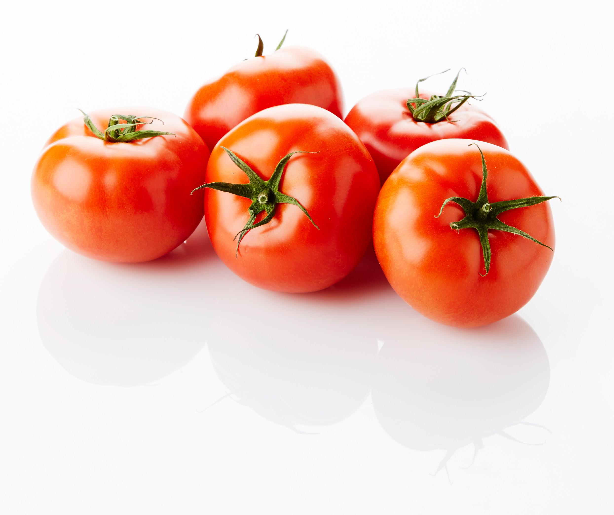 """Page 62 of Most Belgian greenhouse vegetables' seasons started well"""" BelOrta's Benny Cuypers, Maarten Verhaegen"""