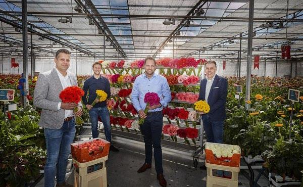 Page 10 of Dümmen Orange affida a L&M Group la vendita dei prodotti finiti rose e gerbere
