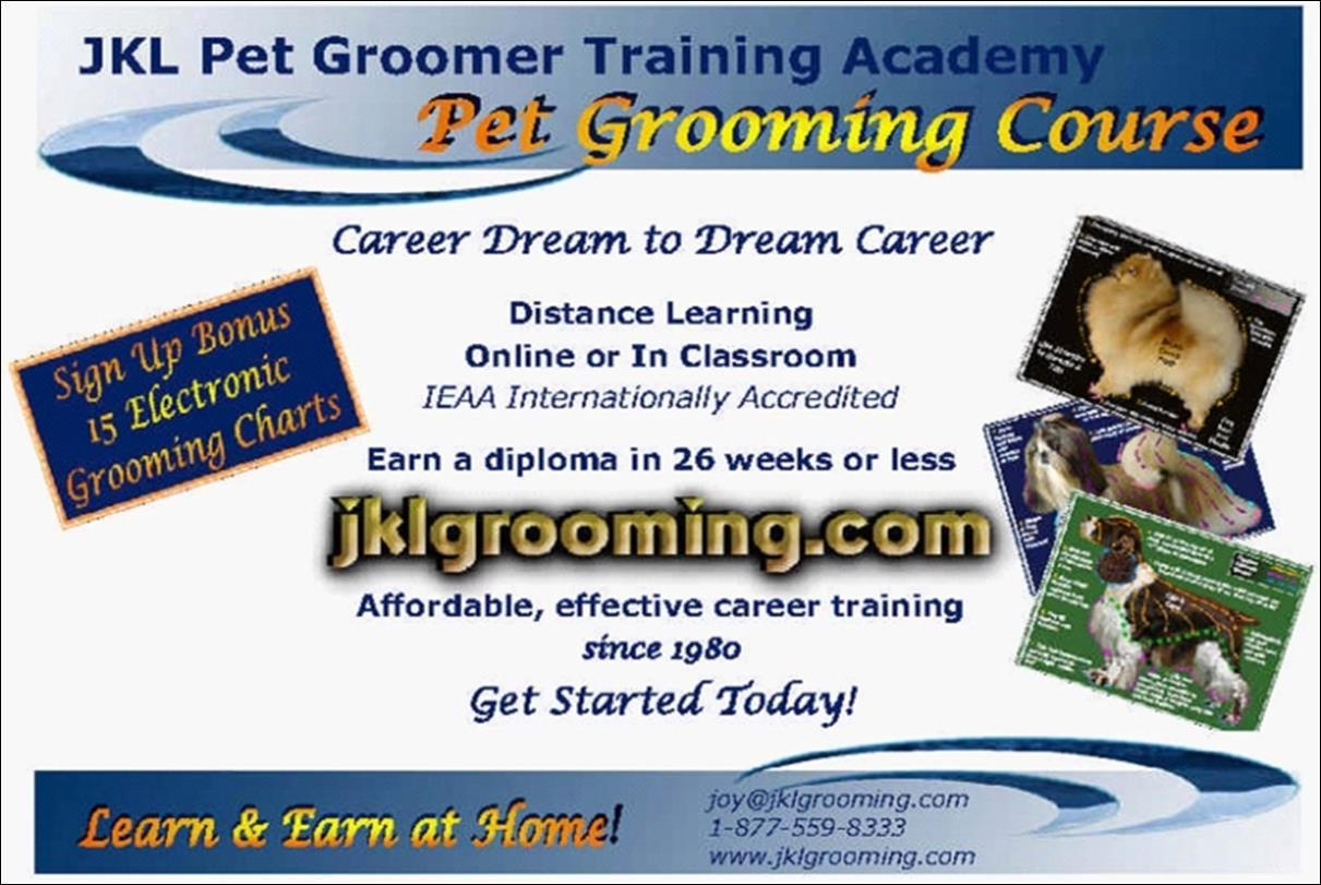 Page 40 of Importance of Having Pet Groomer / Mobile Groomer Insurance