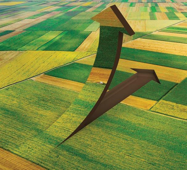 Page 28 of Are Agricultural Land and Commodity Prices About to Soar?