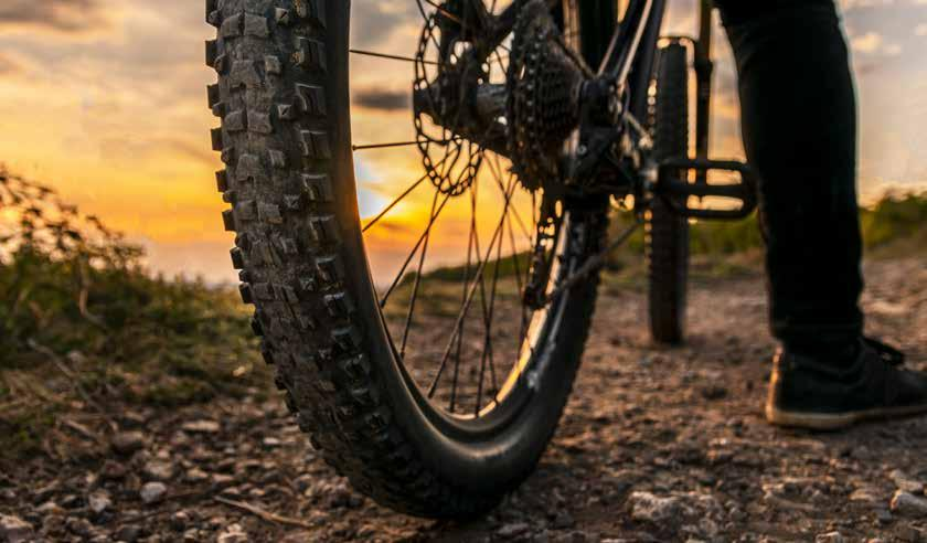 Page 28 of Off the Beaten Path: Biking in SC