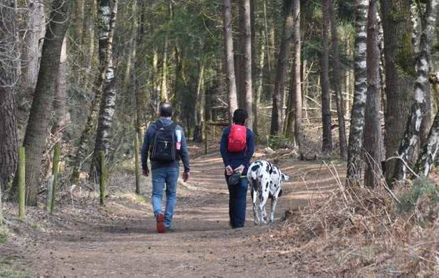 Page 5 of Samen met Wandelnet de paden op, de lanen in