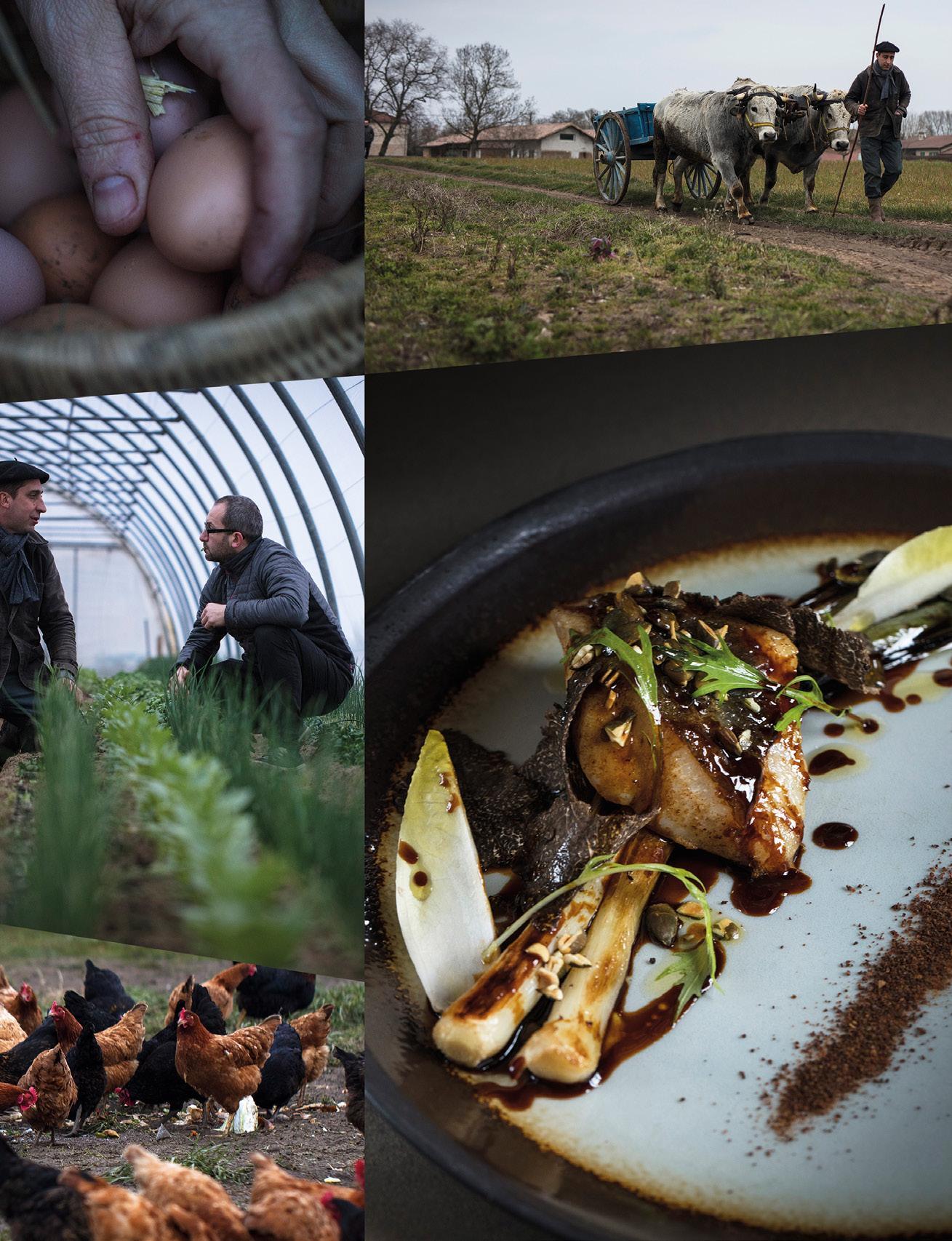 Page 66 of Produits de nature & Cuisine de Chefs