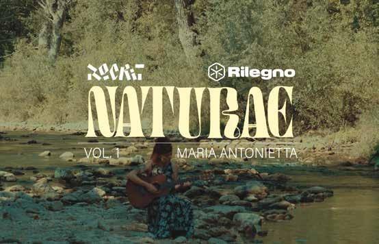 Page 34 of Naturae, la musica e il legno