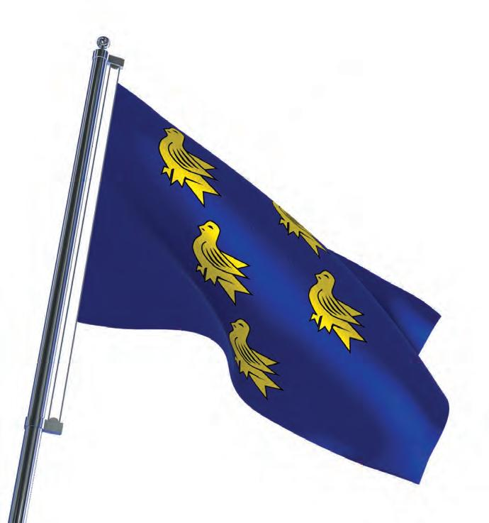 Page 10 of The Sussex Flag