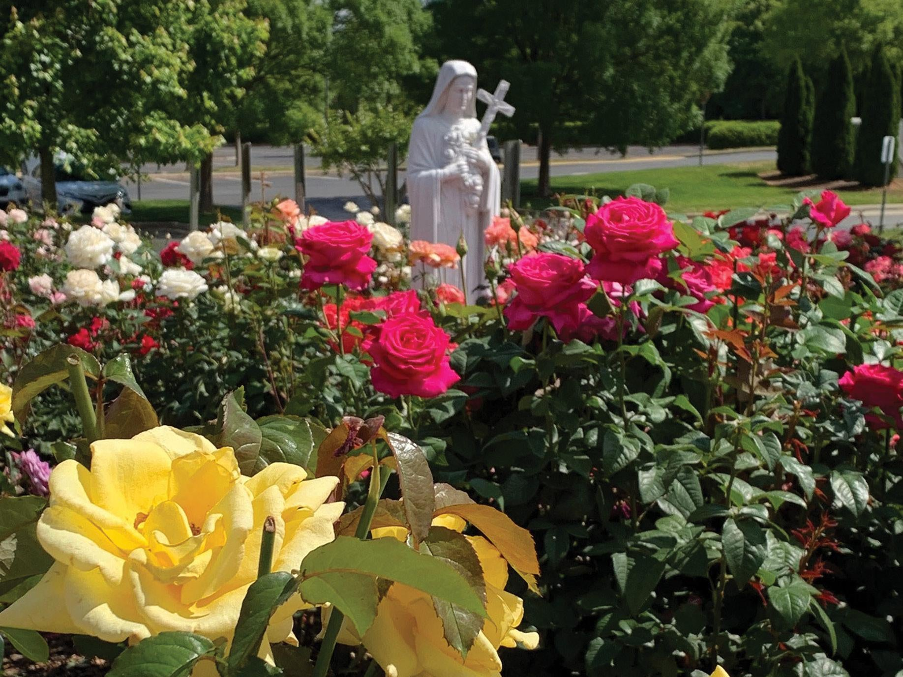 Page 6 of Rose Garden Guild Ministry Fosters the Beauty of Our Church While Honoring St. Therese