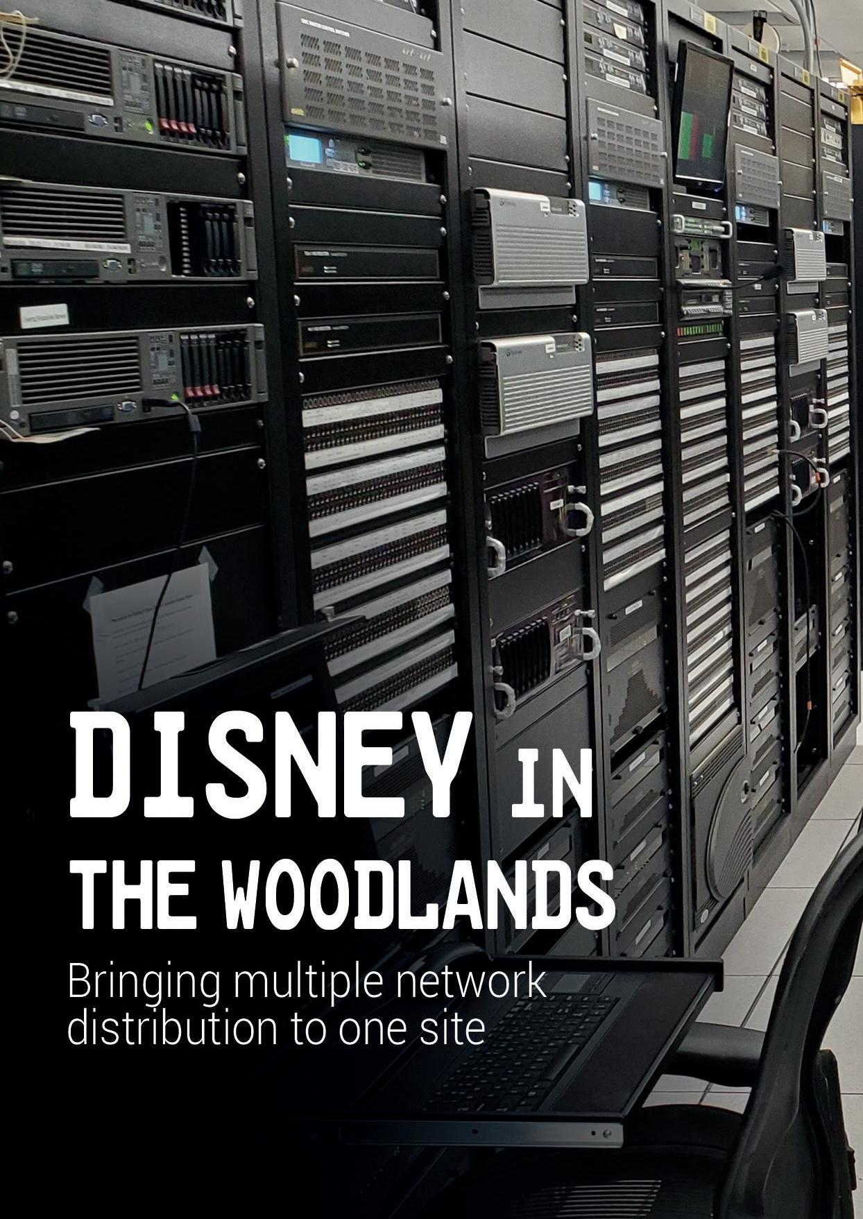 Page 34 of Disney in The Woodlands