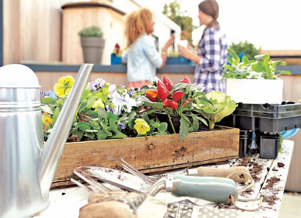 Page 28 of Mistakes You're Making When Purchasing Garden Supplies
