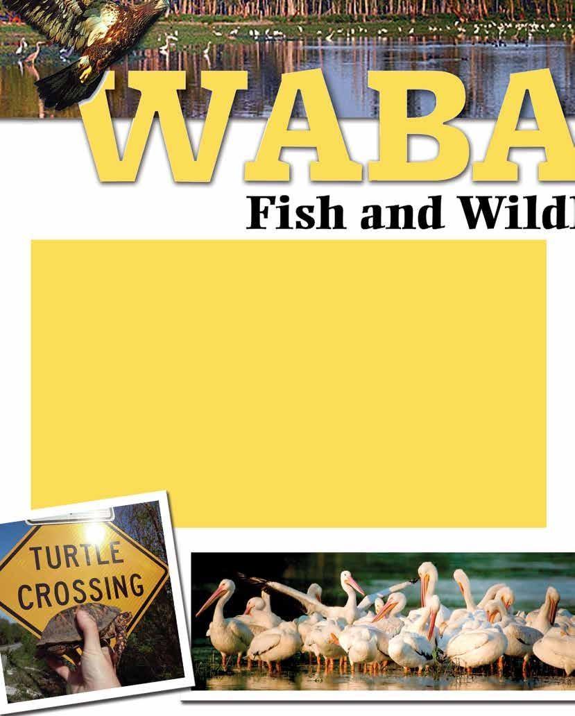 Page 76 of Wabashiki