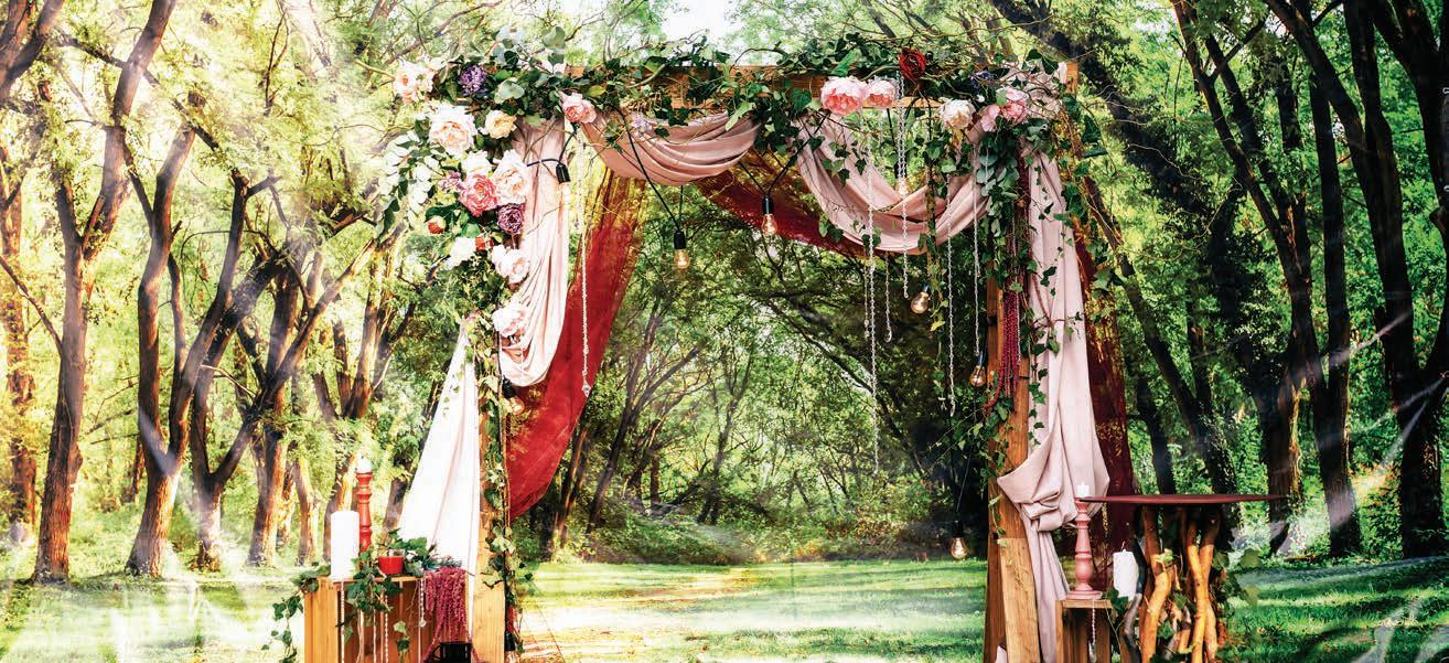 Page 16 of Larger than life wedding flowers