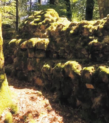 Page 10 of Ein Ausflug zu Ruinen im Kleinen Wiesental