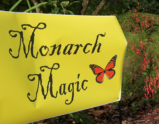Page 14 of Monarch Wings' Dedication at Sensory Butterfly Gardens