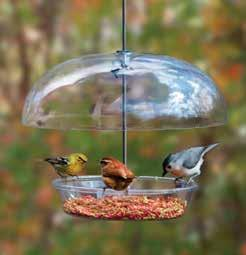 Page 28 of Attract More Birds to your Backyard