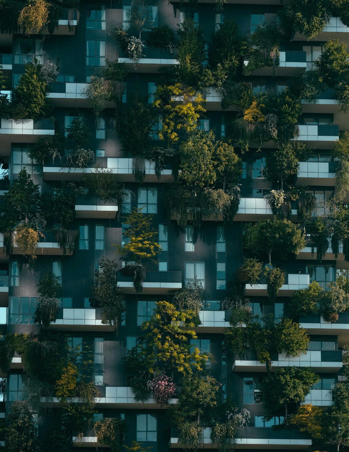 Page 38 of Žaliojo indekso svarba tvariai miestų plėtrai