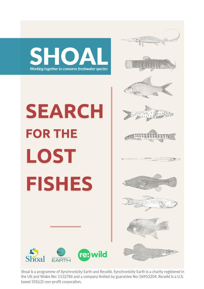 Page 32 of Hledání ztracených ryb