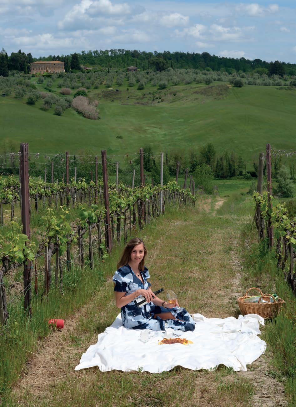 Page 78 of Montechiaro: pic nic in vigna e caccia al tartufo