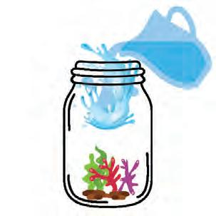 Page 31 of Water Gardening Aquaponic Ecosystems