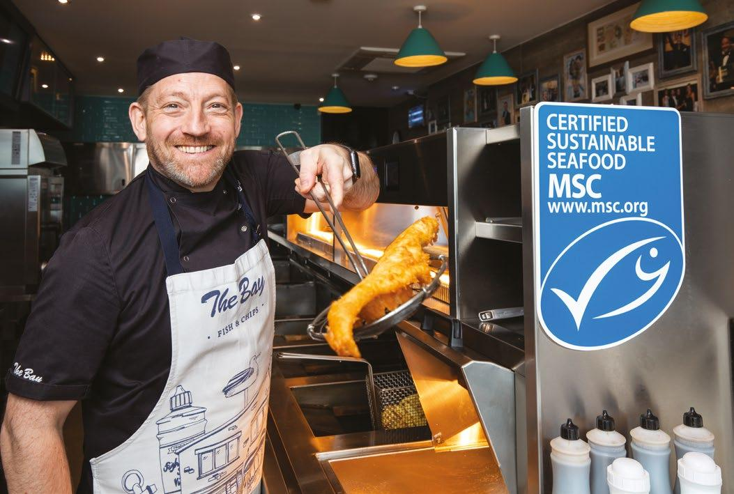 Page 26 of The Bay joins seafood charity in highlighting local sustainable seafood