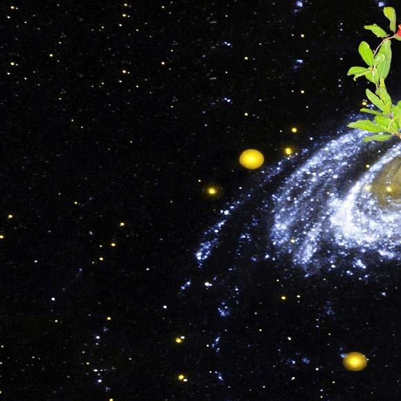 Page 32 of Origin of Life: the Initiative and Beyond Kemi Ashing-Giwa