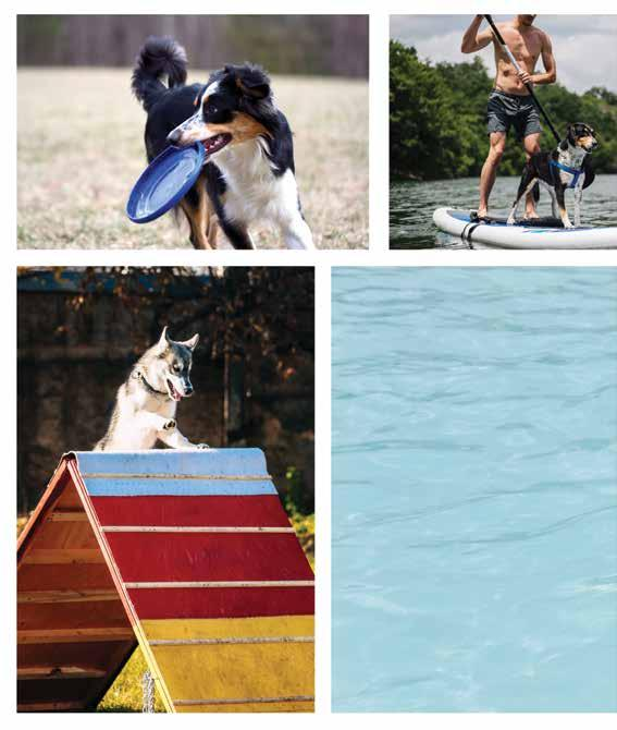 Page 32 of Pets atHome