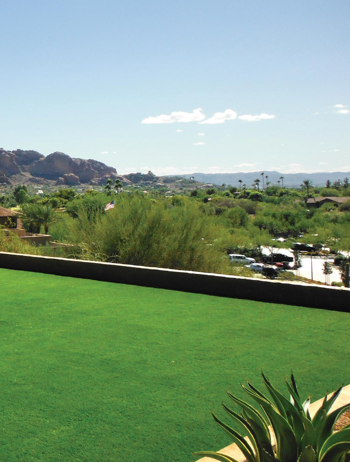 Page 15 of ALCA Member Profile: The Synthetic Grass Store/ Arizona Turf Masters