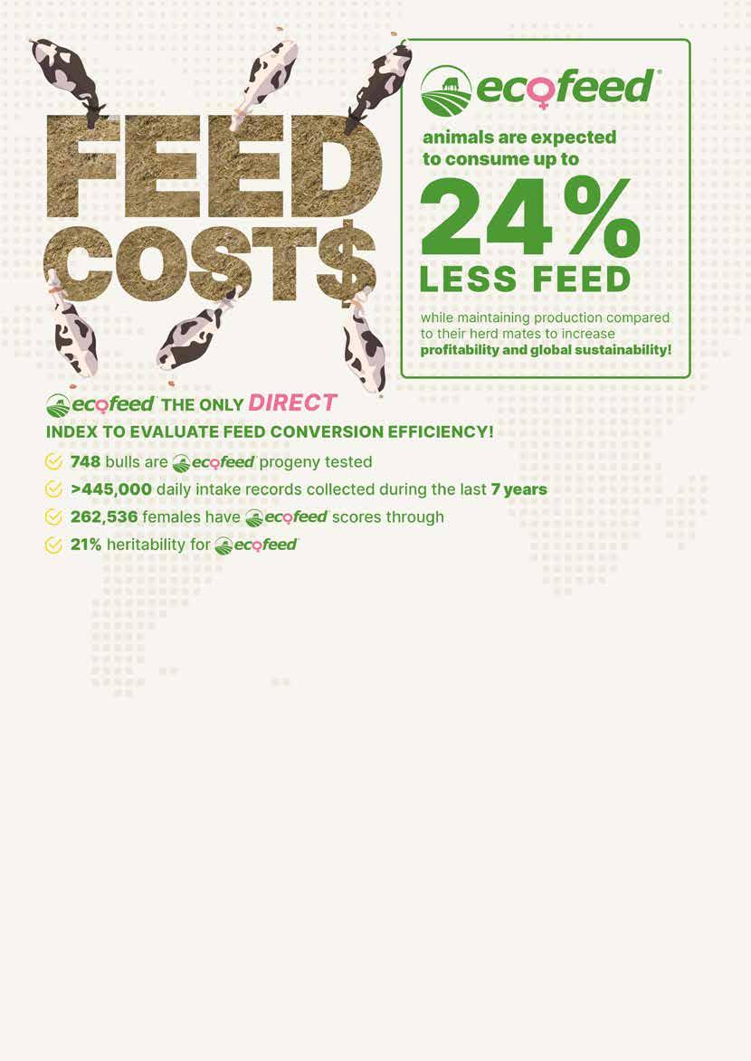 Page 34 of ECOFEED