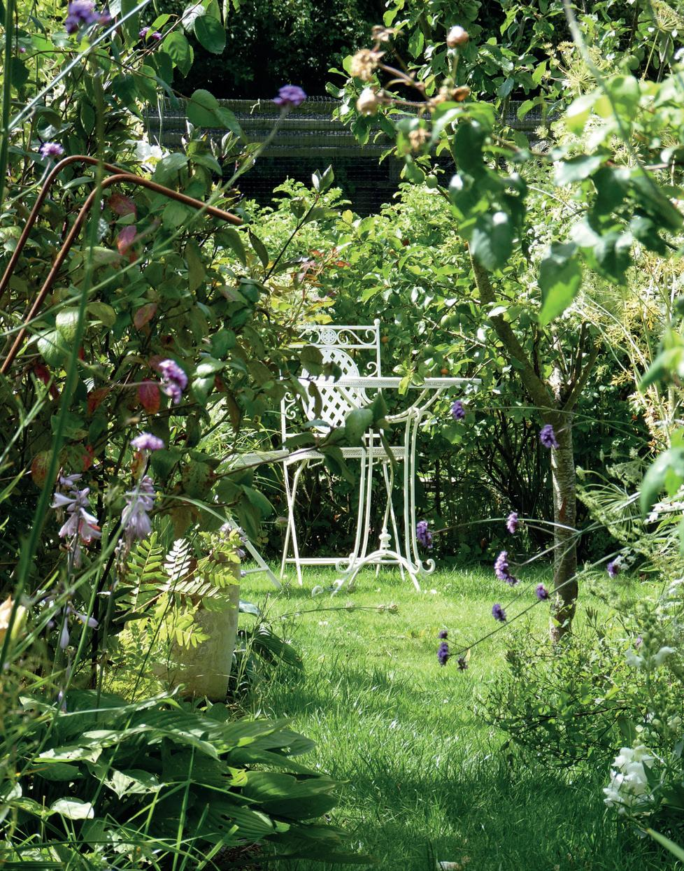 Page 58 of Gardens: Kirsty McLean on creating a cottage garden