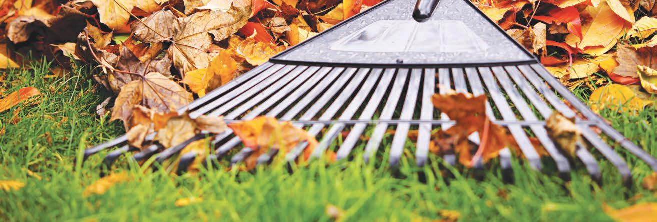 Page 28 of Lawn care: Helpful tips to prepare your lawn for winter