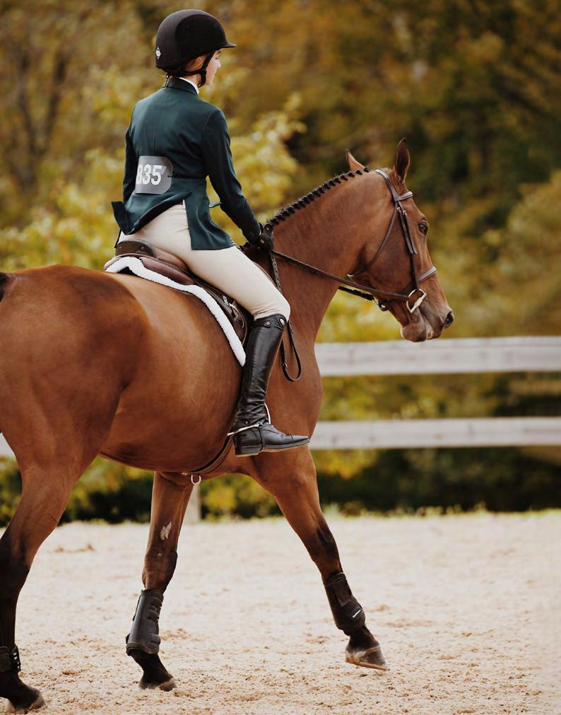 Page 34 of THE FALL EQUESTRIAN SEASON IS BACK