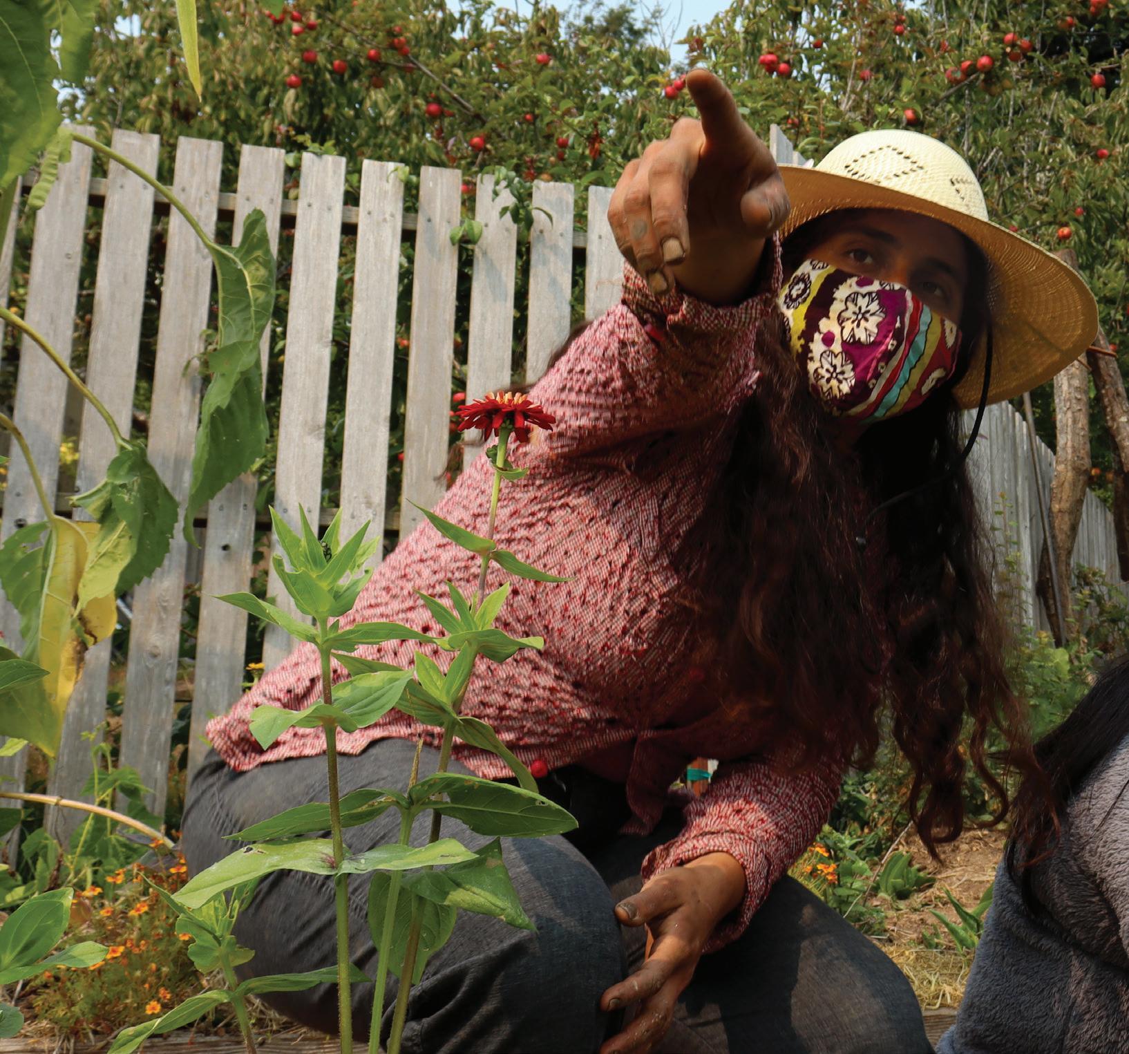 Page 14 of Jardin Sanctuario creates safe space for community