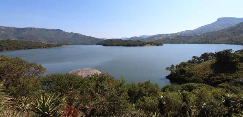 Page 26 of Highs in a year of lows – Umgeni Water delivers