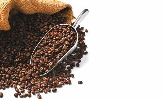 Page 24 of Menu: Polacy coraz lepiej znają się na kawie