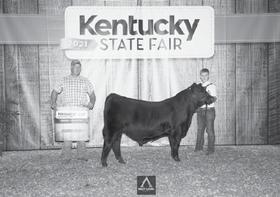 Page 72 of Kentucky Angus Association News