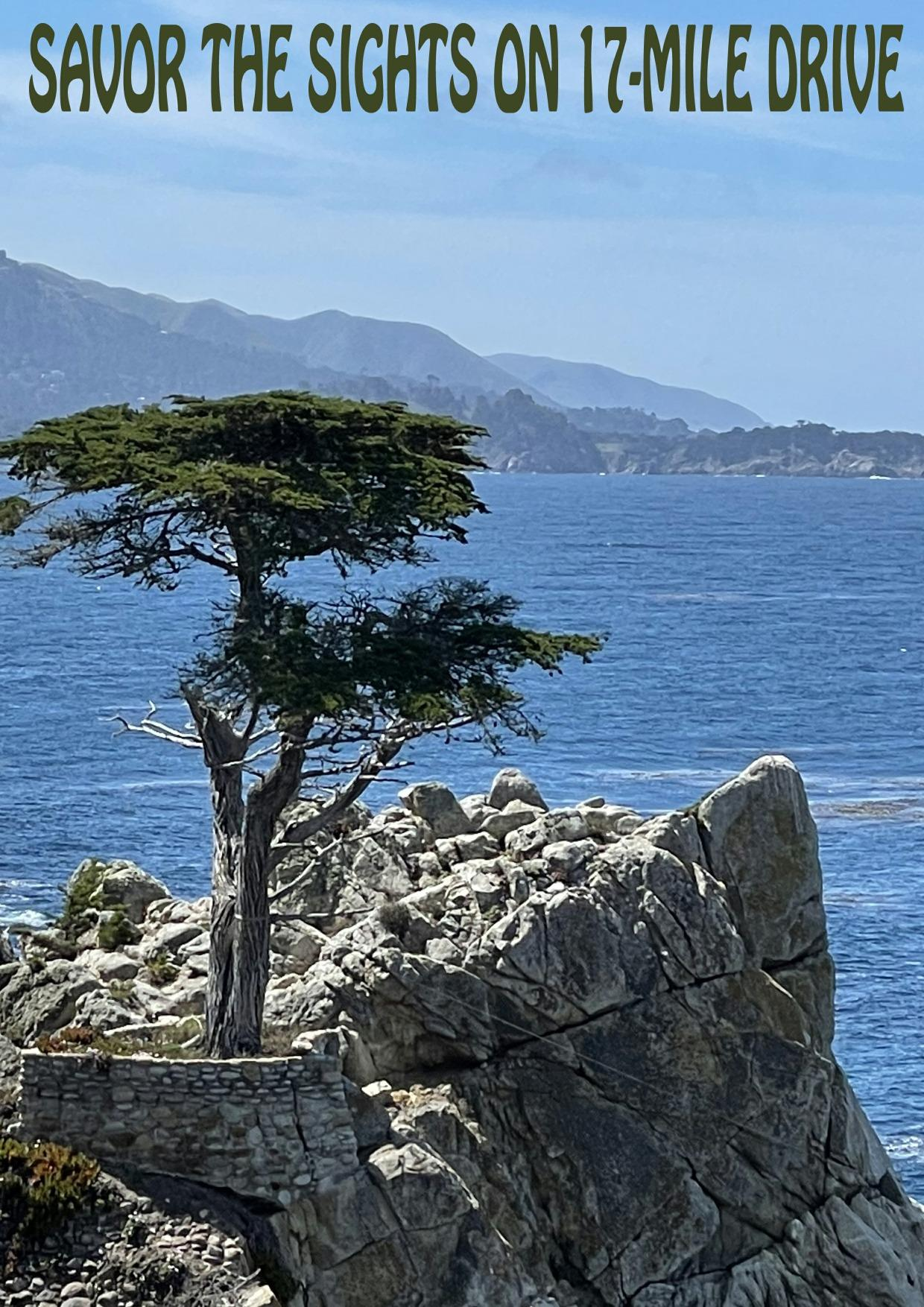 Page 14 of Savor the Sights on 17-Mile Drive