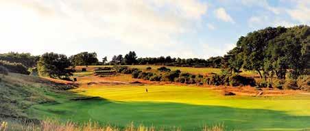 Page 29 of Woodbridge Golf Club East Anglia's finest
