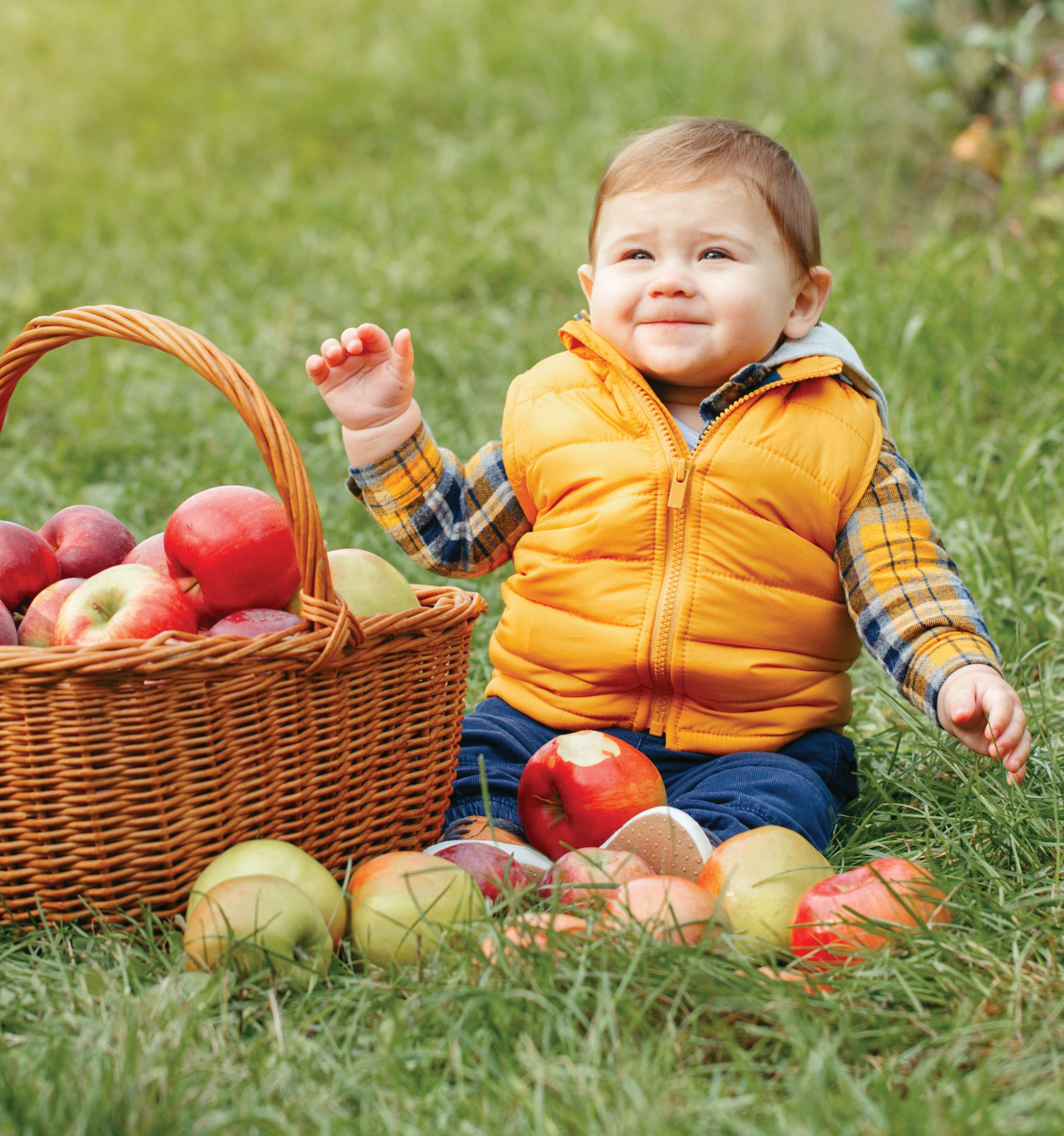Page 18 of Tips for Apple Picking with Kids