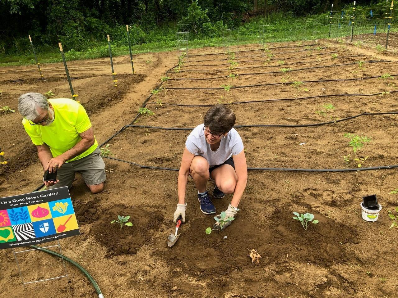 Page 5 of St. Andrew's Reimagines Mission with a Good News Garden