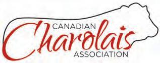 Page 14 of De la Charolais Association Canadienne